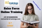 Sales Force Online Training In Malaysia, Canada, Australia, Canada, USA, UK, Dubai