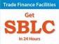 Providers of Fresh Cut BG, SBLC