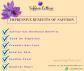 Can you Use Saffron Threads Instead of Saffron Powder